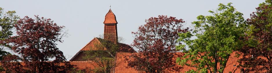 Ditterke-Dächer